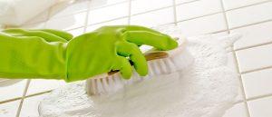 green cleaning services 300x129 green cleaning services