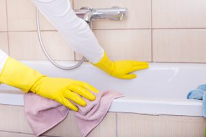%name cleaning lady Cincinnati